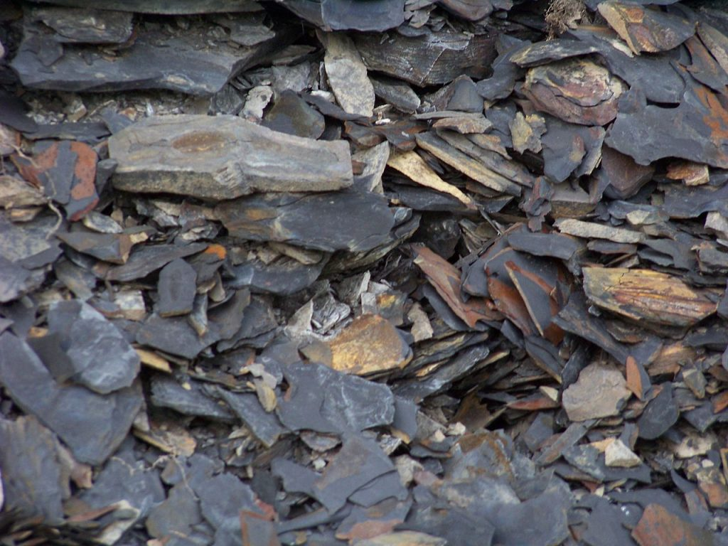 Marcellus Shale – Kipton Quarry
